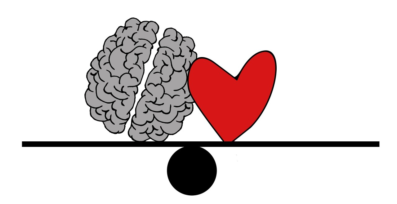 Why Emotions Matter – The Limbic System vrs the Prefrontal Cortex